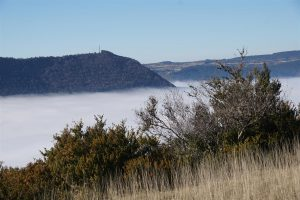 fog in the Tarn valley