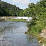 weir at Runel river-mill