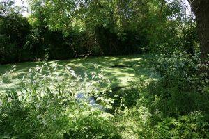 canal du moulin : la Bégude