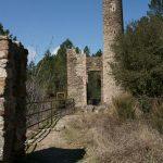 la tour des pinèdes