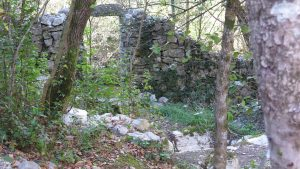 garden gate / portail du jardin