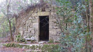 abandoned garden/jardin abandonné